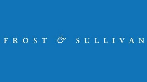 Frost & Sullivan: Türkiye'nin GSYİH'sı 2025'te Üçe Katlanacak