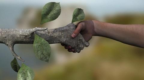 Yeşil Kentsel Dönüşüm ve Enerji Etkin Pasif Binalar Yapalım
