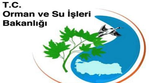 Bölgemiz ve Ötesi Ormancılık Toplantısı
