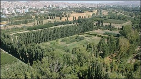 Atatürk Orman Çiftliği'nden 10 Bin Ağaç Söküldü!
