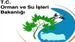 Orman ve Su İşleri Bakanlığı bin 64 Personel Alacak