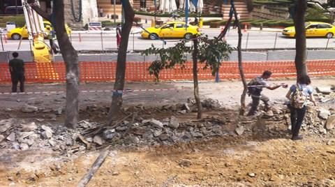 Gezi Parkı Küllerinden Doğuyor