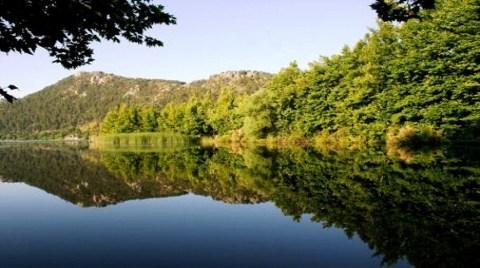 Milli Parka Nükleer Santral Önerisi