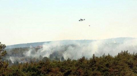 Beykoz'da Yine Orman Yangını!