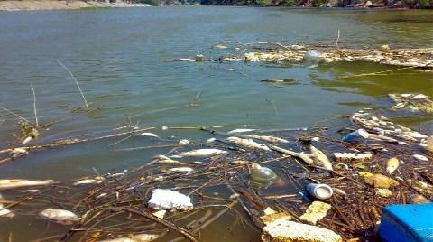 Sakarya Nehri Çöplük Gibi!