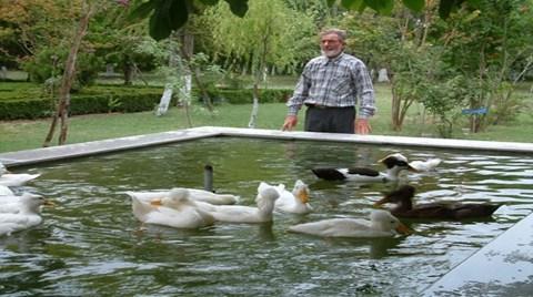 3 Milyon Liraya Satılık Kuş Cenneti