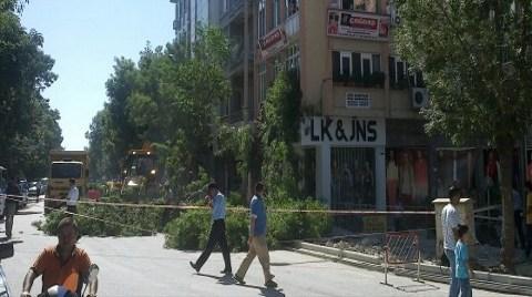 Burdur'da Ağaç Katliamına Tepki