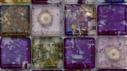 Doğa, Fiorina'dan Yaşam Alanlarına Göz Kırpıyor