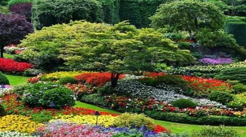 Butchart Gardens-Victoria (Kanada)