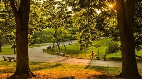 Riverside Park-Londra (İngiltere)
