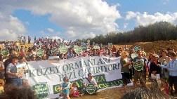 Riva'daki Sivil Orman Girişiminden Notlar