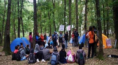 Longoz Ormanlarını Korumak için Kamp Yaptılar