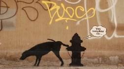 Banksy New York Sokaklarında!