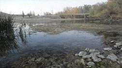 Büyük Menderes'in Kirliliğine İnceleme