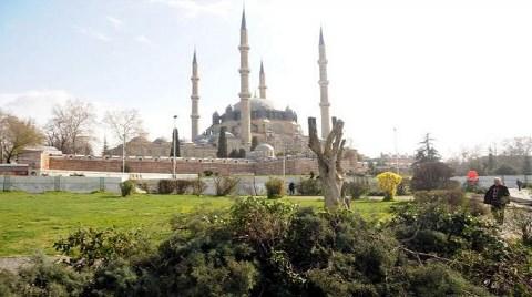 """Edirne'de """"Ağaç"""" Krizi!"""
