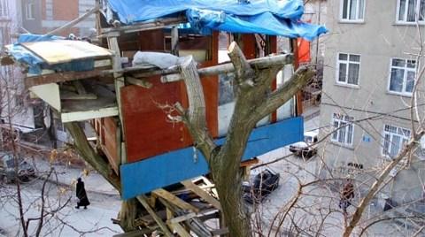 83 Yaşında Kendine Ağaç Ev Yaptı