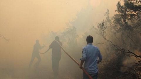 İstanbul'un Ormanları 10 Hektar Daha Azaldı!