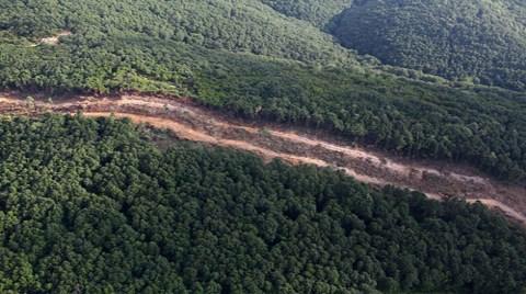 İşte Mega Projelerin Hedefindeki Ormanlar!