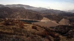 HES ve Madenlere Karşı 'Bin Ceviz Fidanı'