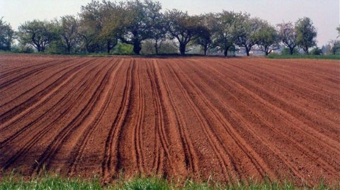 Topraklarının Yüzde 16,1'i Kirli