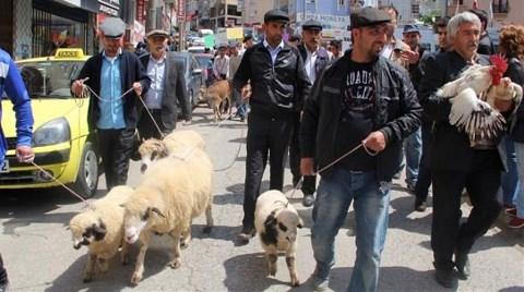 """Giresun'da """"Hayvanlı"""" HES Protestosu"""