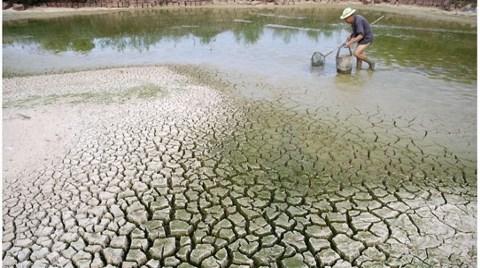 Güllüce: 'İklim Değişikliğinde Türkiye'nin Payı Yok'