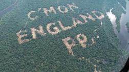 Reklam için Ağaç Katliamı