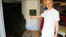 Kadıköy'de 60 Yıllık Ağaçları Kestiler
