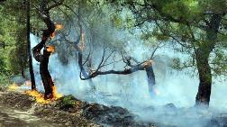 Turizm Bölgesinde Orman Yangını!
