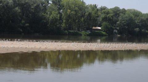Meriç Nehri de Alarm Veriyor