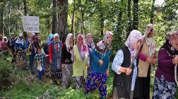 Köylülerden Ağaçlar için Sopalı Nöbet