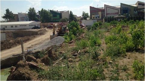 Devlet Tiyatroları'nın Ağaçlı Arazisine 3. Baskın!
