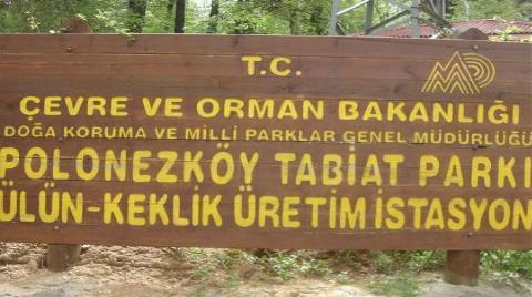 Polonezköy'ün Yeni İmar Planı Hazırlandı!