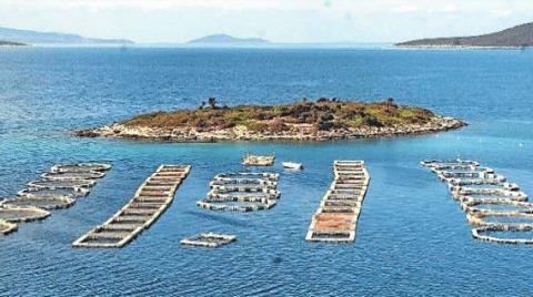 Balık Çiftlikleri Daha Çevreci Olacak
