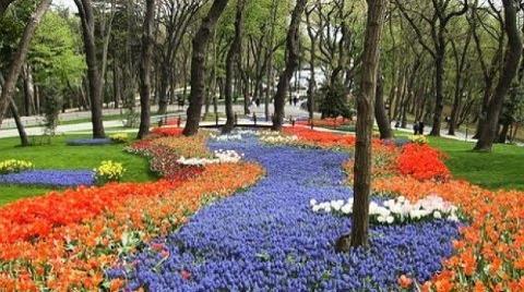İstanbul'un Saklı Cennetleri: Korular