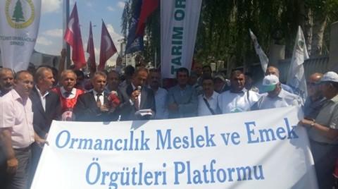 Ormancılık Çalışanlarından Bakan Eroğlu'na 'Kıyım' Mektubu
