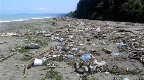 Akçakoca Sahili Çöple Kaplandı