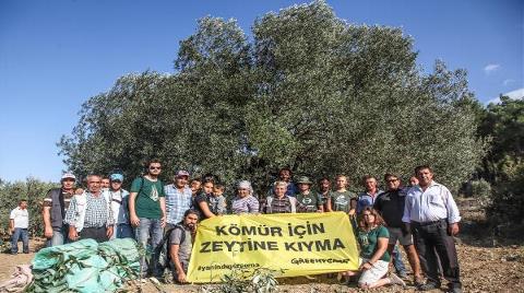 Soma'da İmar Planı Yok, Ağaç Kesmek Var!