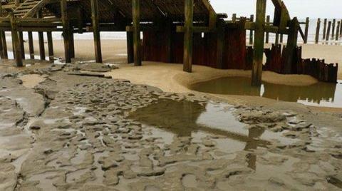 Plajda Uygarlığın Ayak İzleri Bulundu