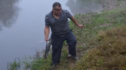 Gediz Nehri'nde Tehlike Çanları