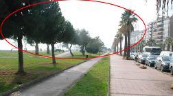 İzmir'in Tramvayı Bin 300 Ağacı da Götürecek!