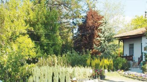 Atatürk Orman Çiftliği 22 Bin Dekar Küçülmüş