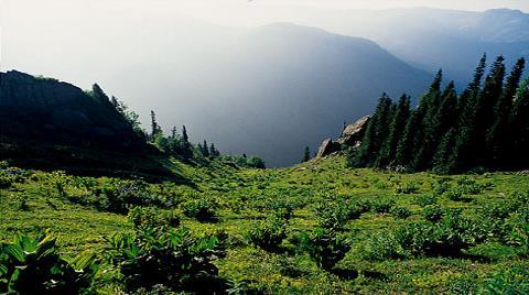 Kaz Dağları'nda Yüzlerce Antik Kent Yok Olacak