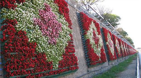 İstanbul 32 Milyon TL'ye Çiçek Açtı!