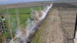 Jeotermal Sular Doğayı Tehdit Ediyor
