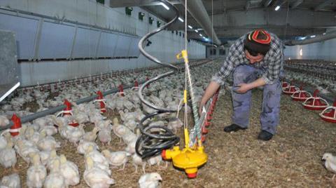 Çiftlikte Elektrik Üretip Devlete Satacak
