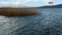 Sapanca Gölü'nde Su Seviyesi Maksimuma Ulaştı