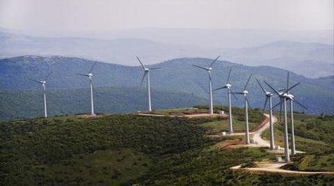 """""""Bodrum Yarımadası Ciddi Bir Çevre Felaketi ile Karşı Karşıya!"""""""