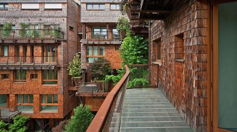 Şehrin Ortasında 'Ağaç Apartman'