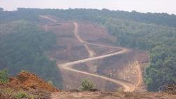 3. Köprü Güzergahındaki Ormanlara Otel ve AVM mi Yapılacak?